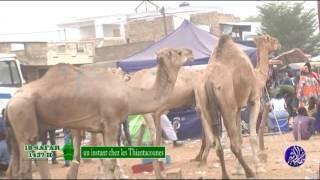Magal Touba 2015 Un instant chez les Thiantacounes