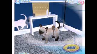 Petz Catz 2 PC 2008 Gameplay