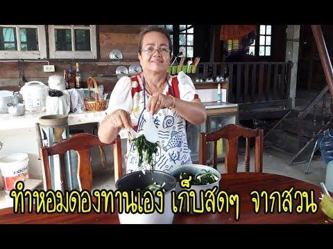ทำหอมดองกินเองแบ่งลูกหลาน เก็บผักสดๆ จากสวน โดยแม่ศรีนวล