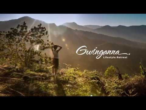 A look at Gwinganna's organic gardens