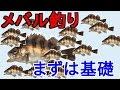 【メバル釣り】メバリング・エサ釣り 仕掛けや釣り方の基礎解説