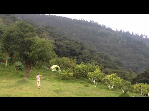 Earth Lodge's avocado farm, near Antigua