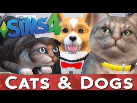 The Sims 4 CATS & DOGS Expansion Pack Trailer - THOUGHTS & DISCUSSION |
