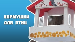 Кормушка для птиц  16.12.16 г.
