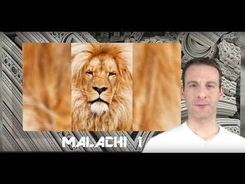 Malachi Chapter 1 Summary and What God Wants From Us