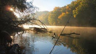 Русская Рыбалка 4 Есть план на стрим Когда план кончится стрим тоже