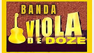 BANDA VIOLA DE DOZE -
