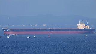 "Ore Carrier ""NSS HONESTY"" 伊良湖水道"