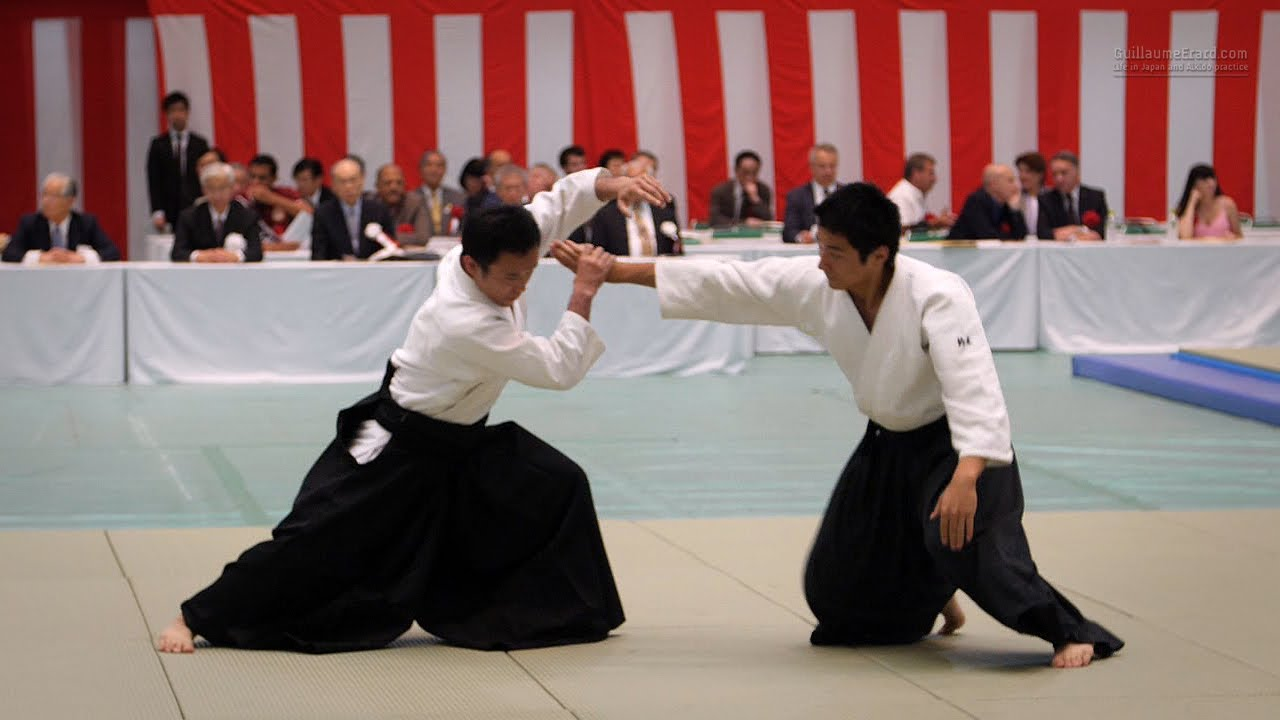 Aikido is a Japanese martial art. Aikido: description, technique and reviews 16
