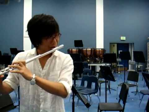 Songs from a Secret Garden - Flute and piano