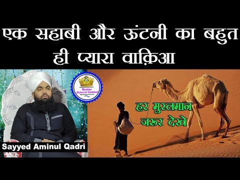 Ek Sahabi Aur Ootni Ka Bahut Pyara Waqiaa   Sayyed Aminul Qadri