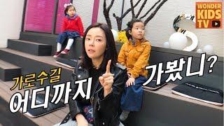 신사동 가로수길 데이트~ 맛있는 케이크 먹으로 고고씽! 가로수길 케이크 맛집 탐방 데이트 cake house l korea hot place