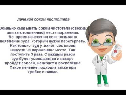 Трава чистотел - инструкция по применению в народной медицине