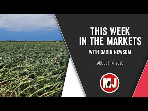 Market Analysis | Darin Newsom | August 14, 2020