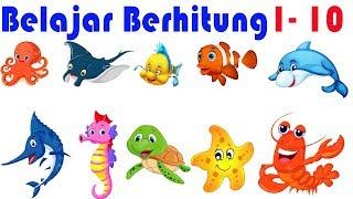 Belajar Berhitung Angka 1- 10 Untuk Anak Balita Dengan Kartun Hewan Laut | Video Pendidikan