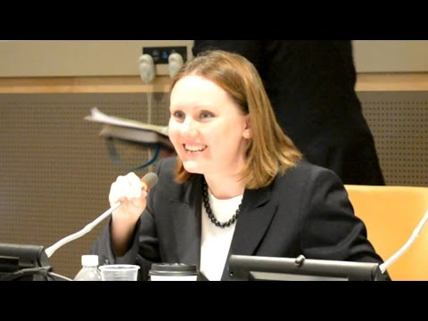 Crimea Report at the United Nations NYC