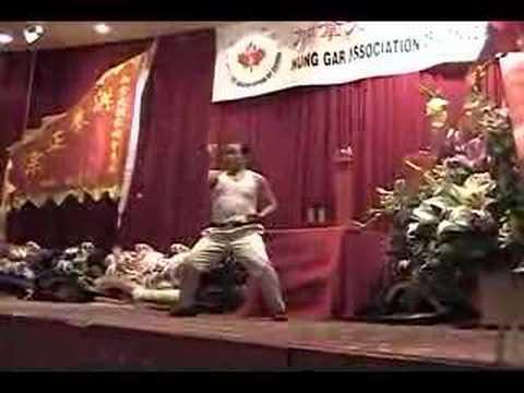 Grandmaster Chiu Wai Tiger and Crane 趙威 - 虎鶴
