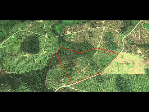 Deer Hunting School: Looking At An Aerial Photo
