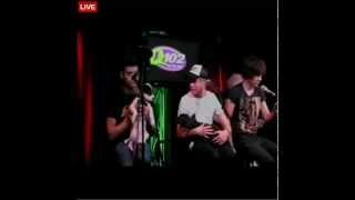 One Direction - What Makes You Beautiful (Live, with puppies! :D)