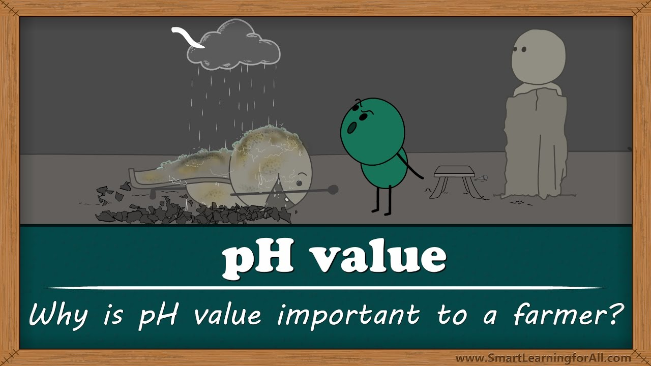 Why Is Soil PH Important To Farmers?