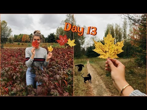 Vlogtober Day 13 // Let's Have a Serious Talk.