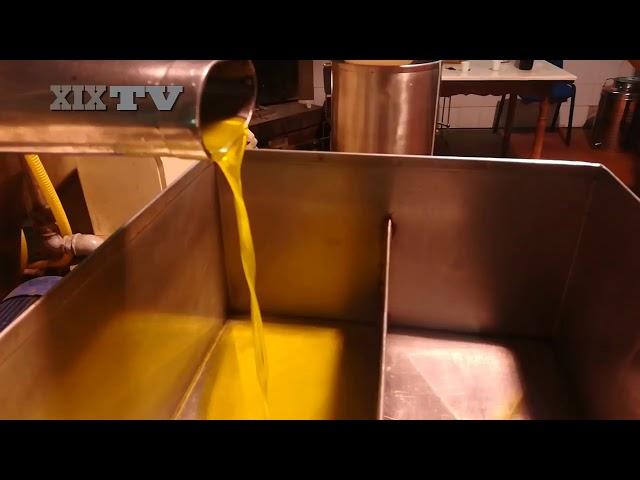 Lunigiana, olio di qualità al frantoio Riani