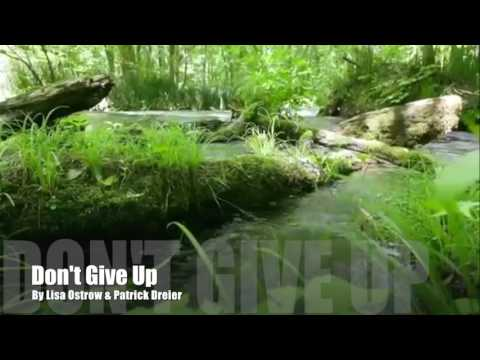 Don't Give Up  by Lisa Ostrow & Patrick Dreier
