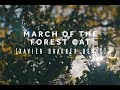 Lane 8 -  March of The Forest Cat (Xavier Dragner Remix)