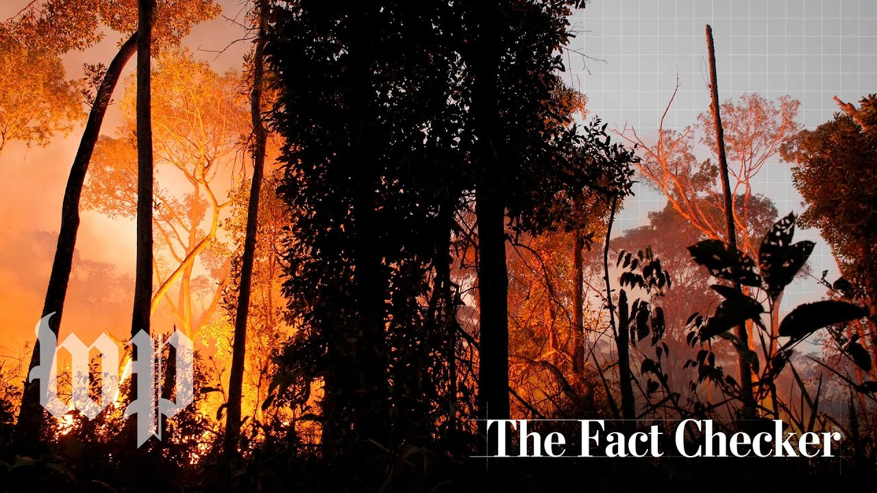 The Amazon rainforest in Brazil is burning. Who started the fires? | The Fact Checker