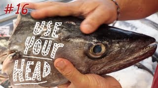 Use Your Head ( your fish head ) !, Recipes, Dishes and Soup Stock, Episode 16