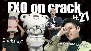 EXO on crack #21 10k special