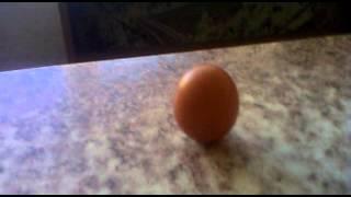 Яйцо стоит вертикально