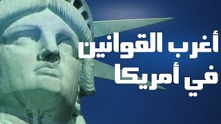 بالفيديو.. أغرب القوانين في أمريكا