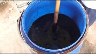 Production of Biofertilizers