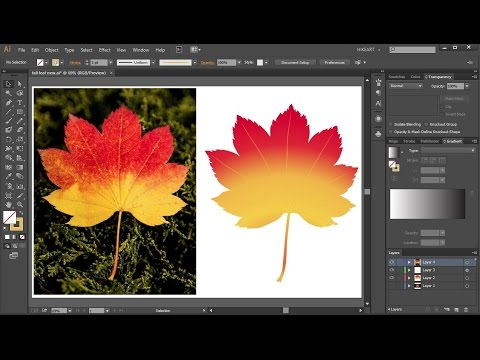 How to Convert a JPEG Image Into a Vector Graphic in Adobe Illustrator