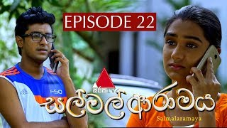සල් මල් ආරාමය | Sal Mal Aramaya | Episode 22 | Sirasa TV Thumbnail