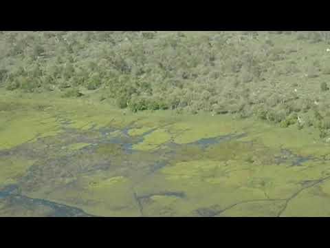 Flight over the Okavango Delta (Botswana)