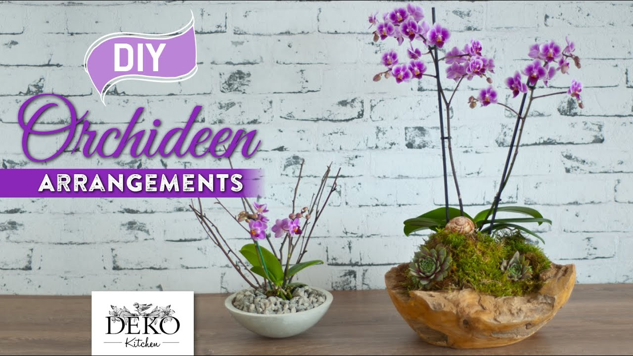 Diy Orchideen Effektvoll Dekorieren How To Deko Kitchen Youtube