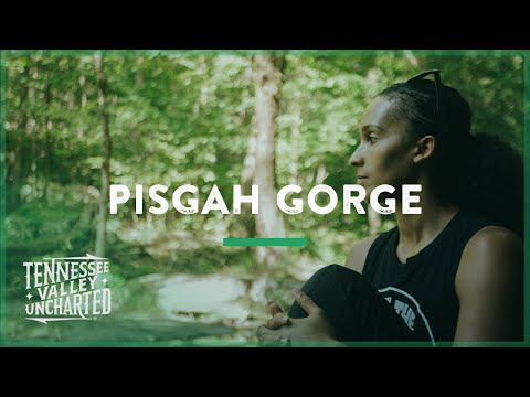 Pisgah Gorge Is A Hidden Gem In Alabama (Pisgah, Alabama) - Tennessee Valley Uncharted