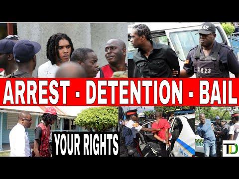 Jamaicans Legal Rights & Responsibilities - Teach Dem