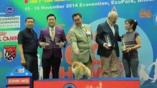 The Jakarta Dogshow Perkin Jaya 15-16 November 2014