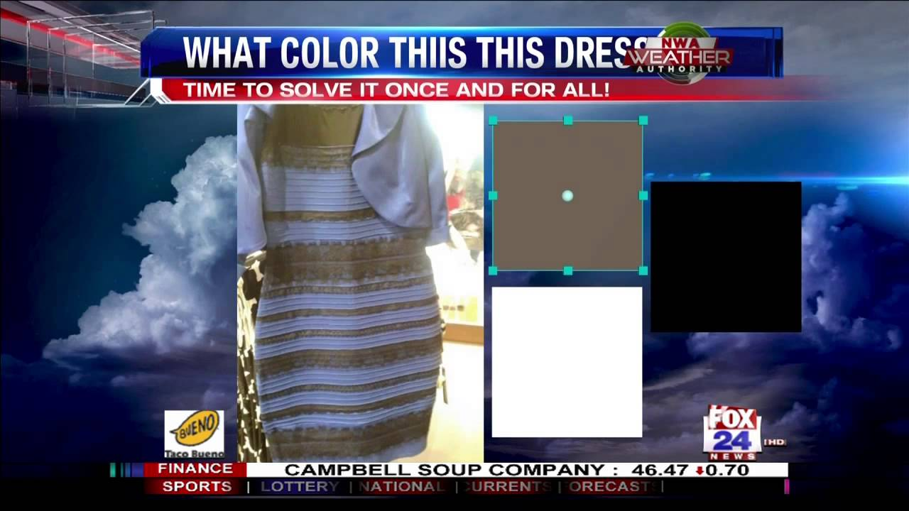 The dress debate - White And Gold Dress Debate What It Means