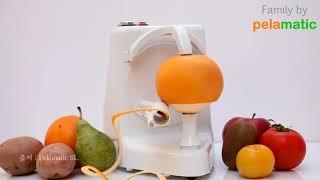 [테크펀] 신기한 과일깎이 기계 [산업방송 채널i]