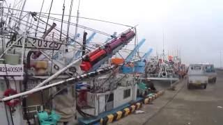 北海道 厚岸漁港(第3種)いか・さんま漁船