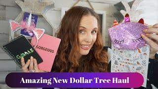 New Dollar Tree haul September 24 2019| All new amazing Finds