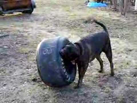 What do you do with your old hoosier tires youtube for What do you do with old tires