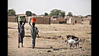 Luchemos contra la desertificación y la sequía