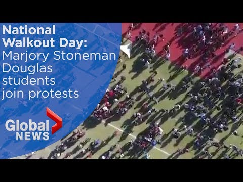 Marjory Stoneman Douglas students join mass walkout