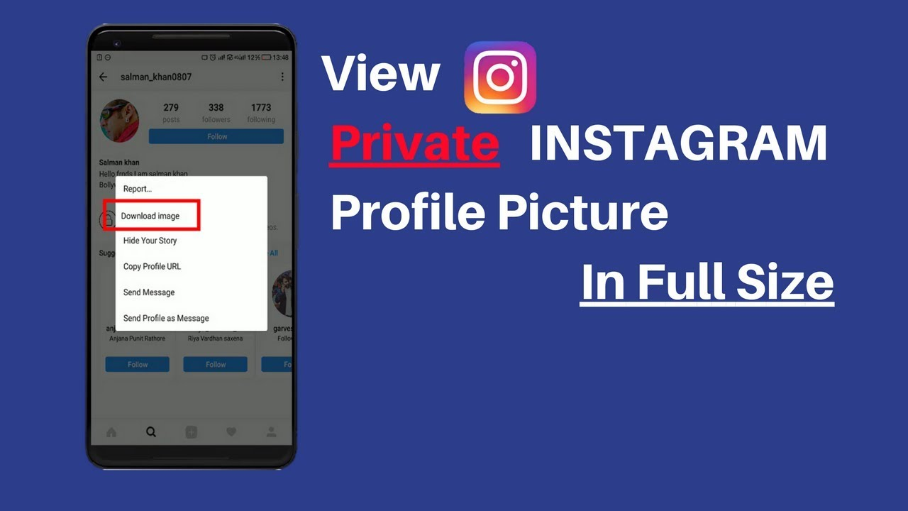 View Privated Instagram Profile Picture - 2018 [No external app]