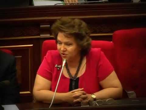 Вице-спикер парламента Армении поставила на место адвоката Аурелия Григориу